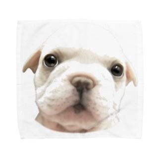 フレンチブルドッグA 子犬 Towel handkerchiefs
