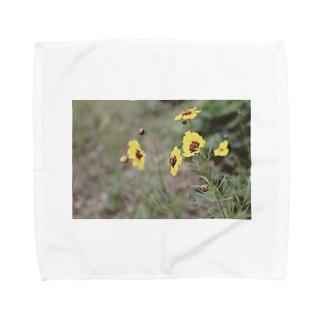 なついろ Towel handkerchiefs