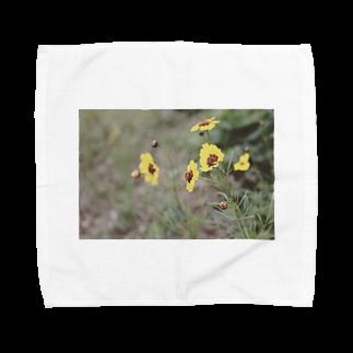 ishiue_hikoのなついろ Towel handkerchiefs