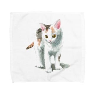 白三毛子猫 タオルハンカチ