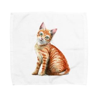 茶トラ子猫 Towel handkerchiefs
