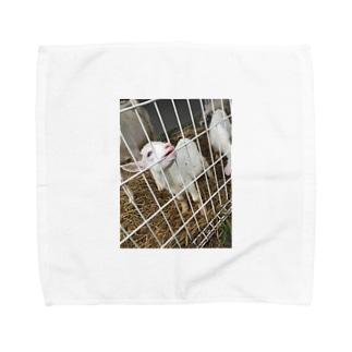 ヤギしゃん。 Towel handkerchiefs