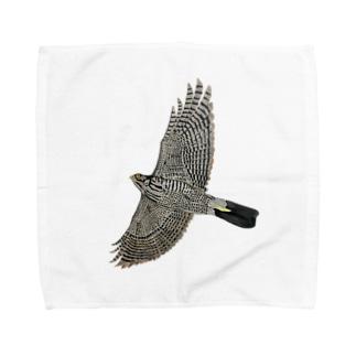 猛禽類 ツミ 🦅 だぞっ‼️ Towel Handkerchief