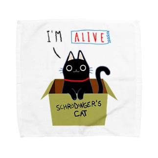 シュレディンガーの猫 タオルハンカチ