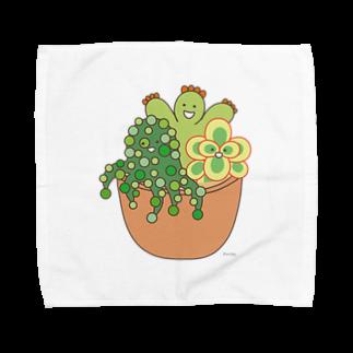 多肉植物たにくさんの多肉植物たにくさん (テラコッタのプランターに集合) Towel handkerchiefs