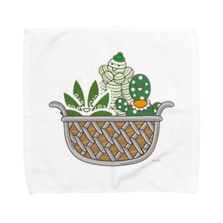 多肉植物たにくさんの多肉植物たにくさん (ワイヤーフレームに集合) Towel handkerchiefs