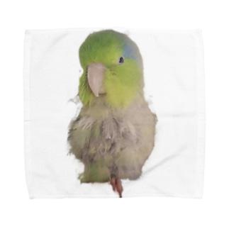 マメルリハのまめぞう Towel handkerchiefs