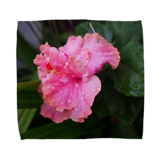 雨濡れの仏桑花 Towel handkerchiefs