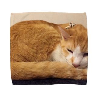 あかめ@猫カフェの永ちゃん代表 Towel handkerchiefs
