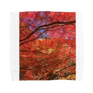 紅葉へ行こうよう Towel handkerchiefs