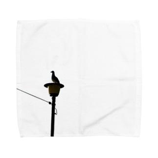 黒海鳥 Towel handkerchiefs