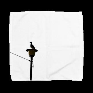 小倉あん〜小麦パンを添えて〜の黒海鳥 Towel handkerchiefs