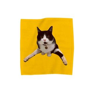 こくらねこ部 にぃちゃんグッズ Towel handkerchiefs