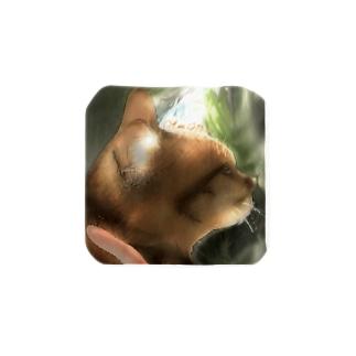 愛猫きゅんきゅん Towel handkerchiefs
