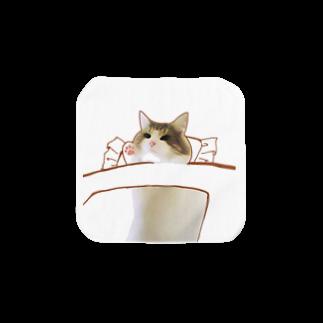 KTSの布団で寝る猫 Towel handkerchiefs