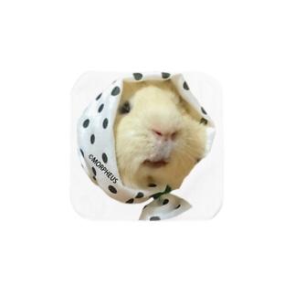ホッカムリ二スト Towel handkerchiefs
