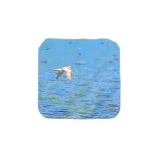 イカルチドリの飛ぶ川面 Towel handkerchiefs