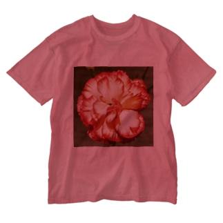 イケてるカーネーション Washed T-shirts