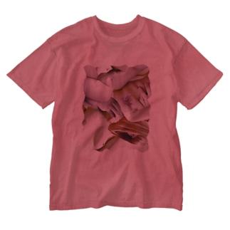 皮膚をまとうTシャツ Washed T-shirts