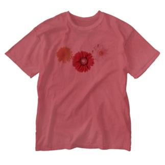 ガーベラ・もり Washed T-Shirt