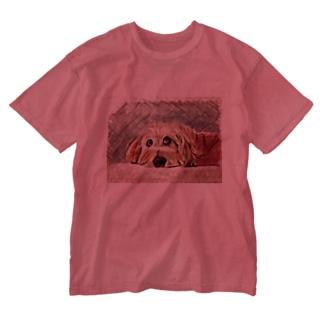 はなちゃんだよ Washed T-shirts