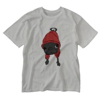 パーカーAJパグ Washed T-shirts