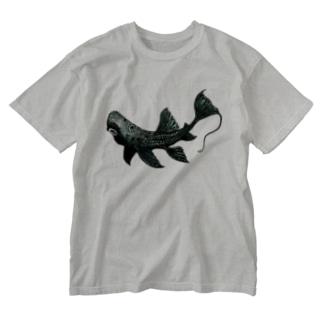 アグアプレコ Washed T-shirts