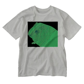 neon guinea pig Washed T-shirts