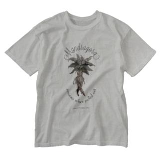 マンドラゴラ Washed T-Shirt