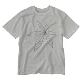 葉っぱ (パキラ) Washed T-shirts