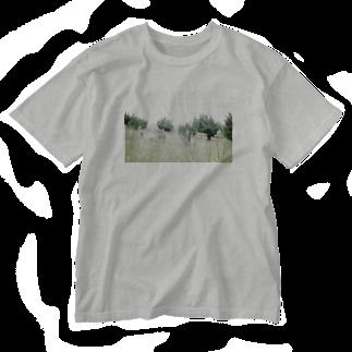 遺跡へ行きたいの上原遺跡 Washed T-shirts