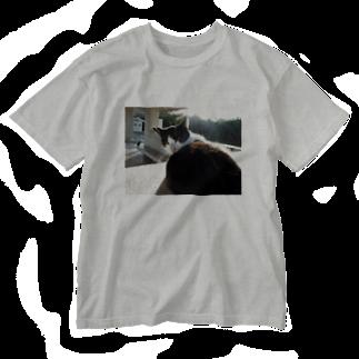 きしの見返り美猫図 Washed T-shirts