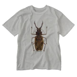 オオキバウスバカミキリ Washed T-shirts