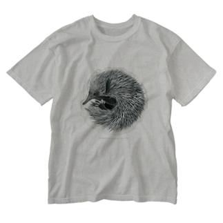 ハリモグラ Washed T-shirts