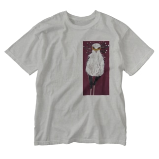 ヘビクイワシ Washed T-shirts