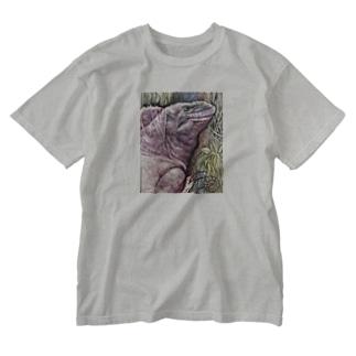 tashiroriekoピンクイグアナ Washed T-shirts