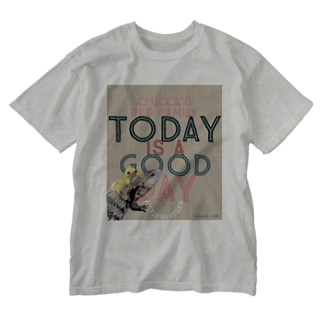 Today is a good day カカオ&シトラス Washed T-shirts