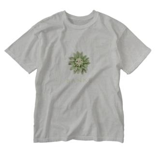 ワンモナイトのばんけ Washed T-shirts