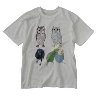 とりいろいろとり Washed T-Shirt