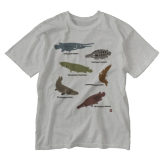 SILHOUETTE AQUARIUM 02 Washed T-shirts