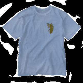 甘津 さえ(Amatsu Sae)のセミの抜け殻クン Washed T-shirts