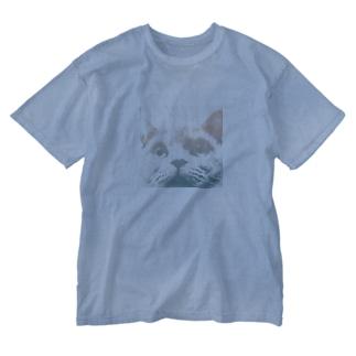 miteruCAT Washed T-shirts
