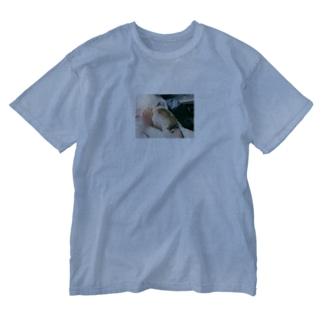 ピーちゃん Washed T-shirts