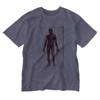 人体生理学 Washed T-shirts
