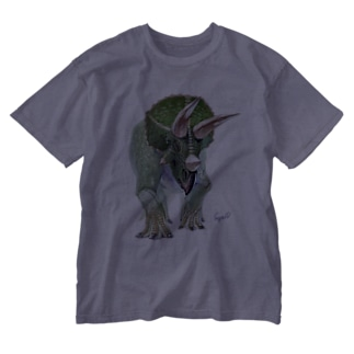 Triceratops Washed T-shirts