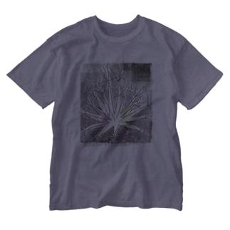 サボテン 晃山 Washed T-shirts