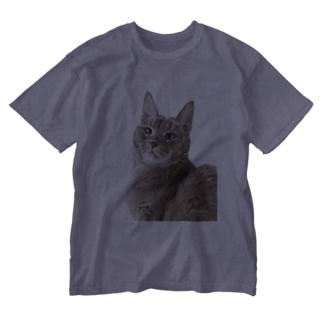 アビシニアンのいち夏ちゃん Washed T-shirts