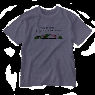 北アルプスブロードバンドネットワークの2019年版公式グッズ Washed T-shirts