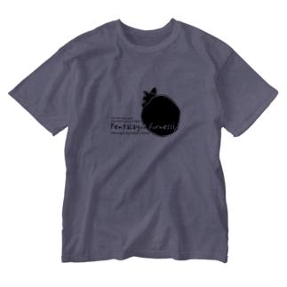 アマミノクロウサギ Washed T-shirts
