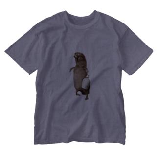 酒好き剥ちゃん Washed T-shirts